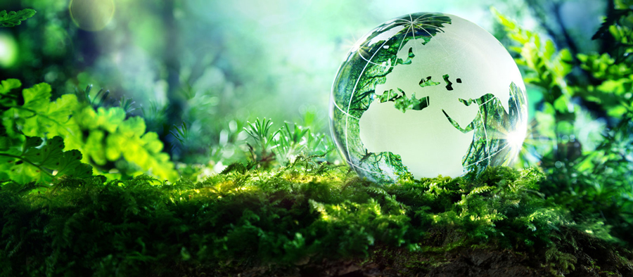 environmental-policy-and-sustainable-development